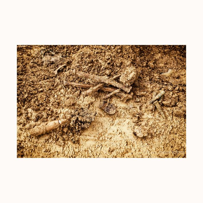 Vision monochrome du passé, travail issu de reportage sur Fouille archéologique dans le grand est